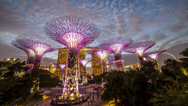 Gardens by the Bay Blue Hour Panorama