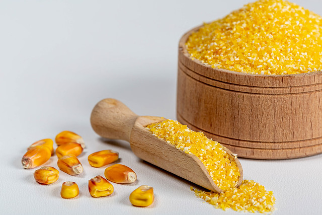 Dry corn grits in a wooden bowl and scoop with whole grains of corn