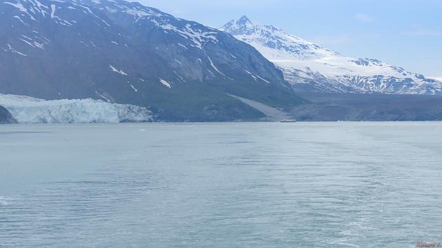 Glacier Bay, Alaska, AK, USA - 2694