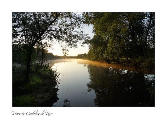 Lumière matinale dans les boires de Loire