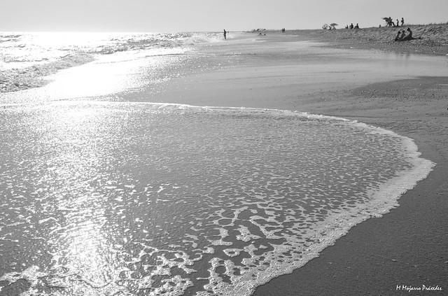 Huelva. Andalusia. Spain