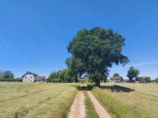 2010 Wanderbild
