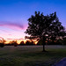Priory park sunset