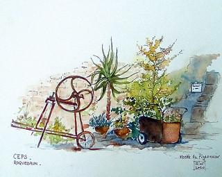Notre virée de déconfinement : Ceps (Hérault)