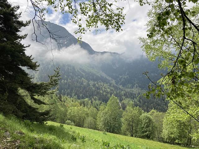 Pied Moutet - les Deux Alpes - Massif de l'Oisans - Isère - Rhône-Alpes - France