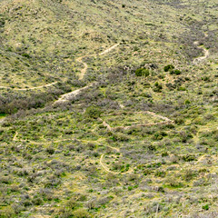 2020 03 Goat Corral from Above