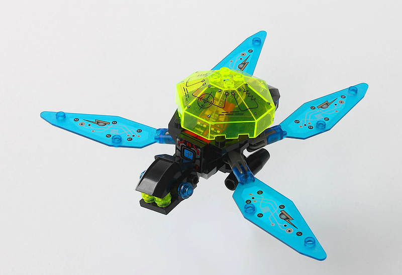 Small Space Turtle