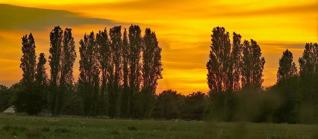 Shropham Sunset. .    Panasonic DMC-FZ1000.  P1280584.