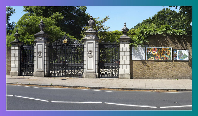 KEW GARDENS 2020 - VICTORIA GATE   (#03 in series) - Kew England UK  25May2020 sRGB web