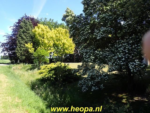 2020-05-27 Zeewolde-Knardijk-Vogelweg (82)