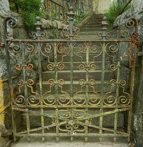 Old gate crusted with lichen and rust