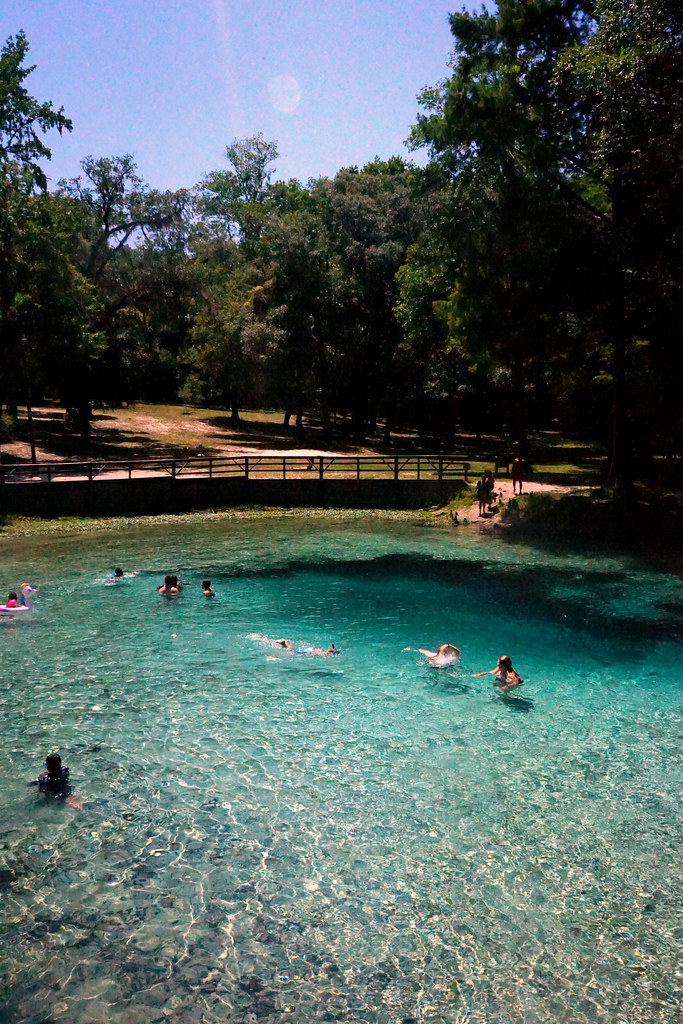 Ginnie Springs - Visit Natural North Florida