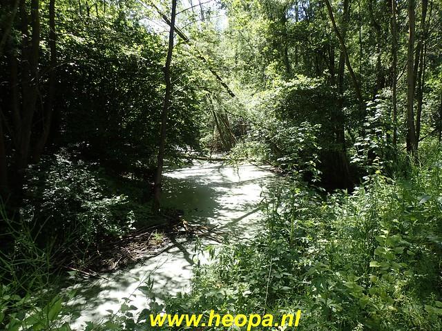 2020-05-27 Zeewolde-Knardijk-Vogelweg (96)