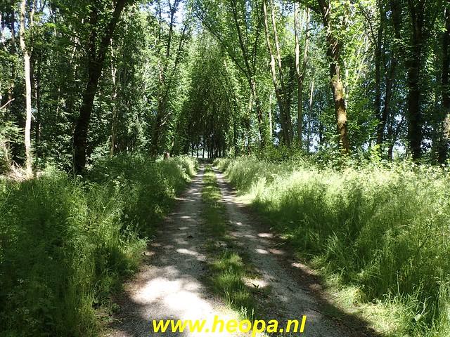 2020-05-27 Zeewolde-Knardijk-Vogelweg (94)