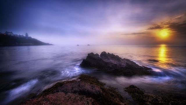 Roches Point Fog