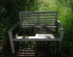 Old bench missing a seat by the old railway tracks