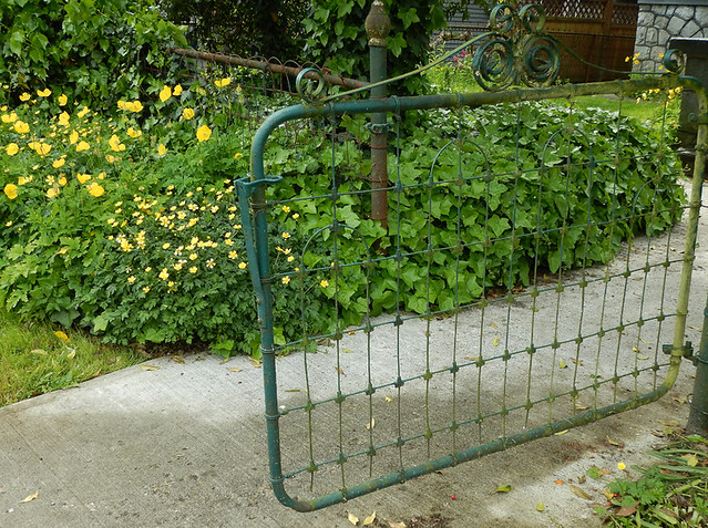 Open gate with buttercups and yellow poppies in profusion