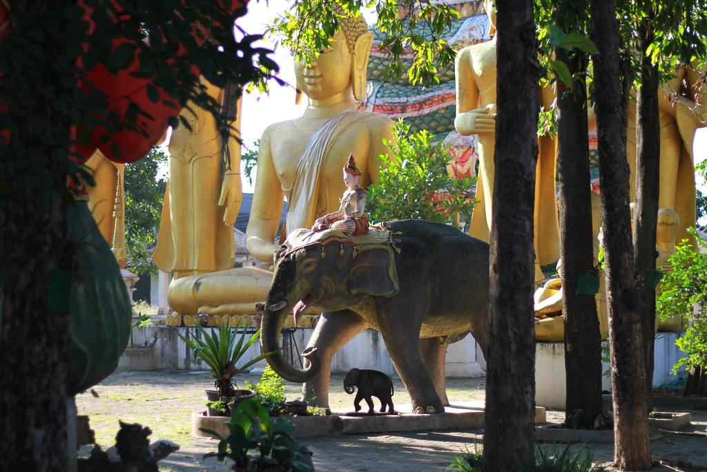 Chiangmai, 17/11/2019