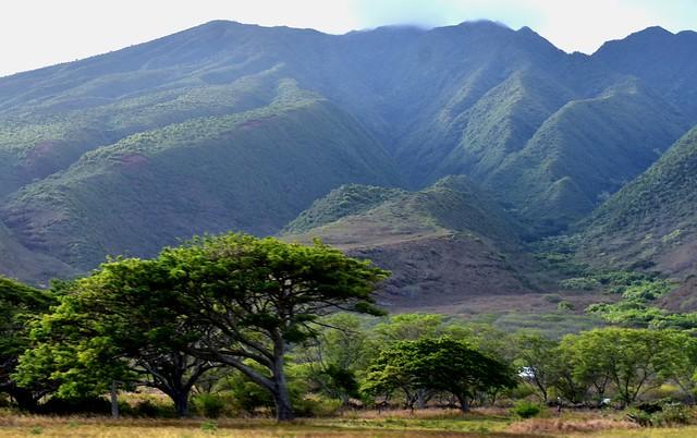 Molokai mountains