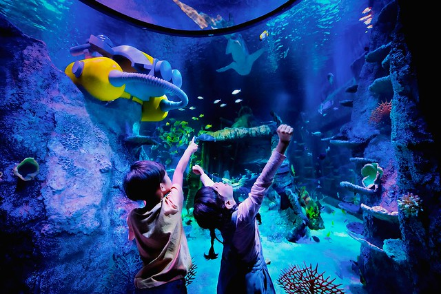 Ocean Tunnel Zone at SEA LIFE Malaysia