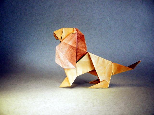 Lion - Andrew Hudson