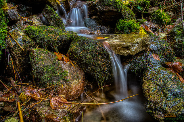 Bachlauf beim Edelfrauengrab-Wasserfall