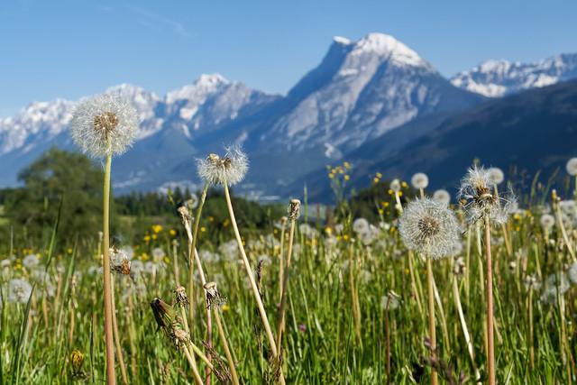 Hohe Munde - Tirol