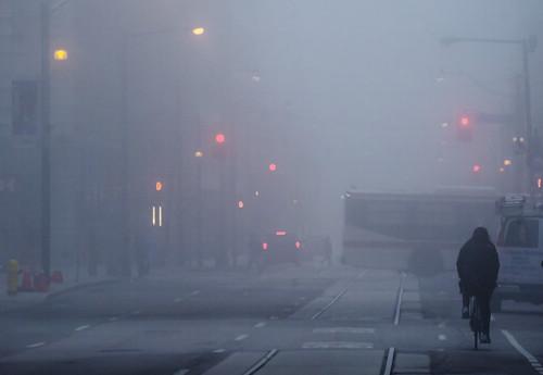 """The fog crept in on little cat feet"""