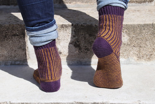 Honeydukes serves brioche too socks