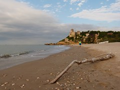 Tamarit , Tarragona (8)