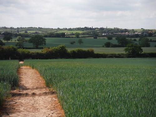 Backview from Mark's Farm towards Rettendon SWC Walk 157 - Wickford to Battlesbridge or South Woodham Ferrers [Battlesbridge Ending]