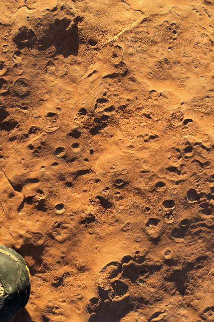 This is not the moon, 280 Million year old rain drop imprints