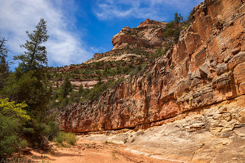 Inner Canyon
