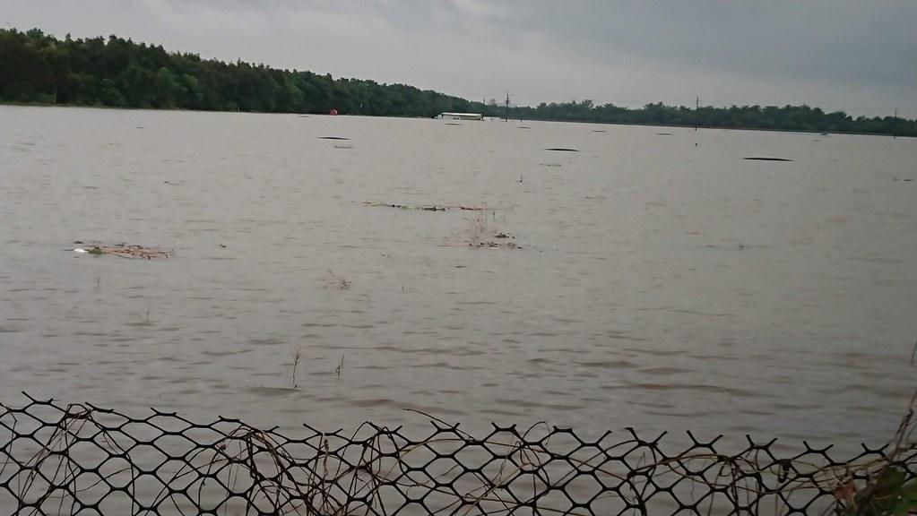 107年823水災淹沒港墘農場約80公頃的農地,水深達2米,積水7日後才消退。(攝影:徐紫珊)