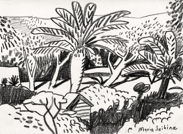 Maria Zaikina, Evening light with palm trees and Mount Carmel, 2020