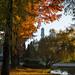 Alfredo Santamaria posted a photo:Universidad de Concepcion, Chile