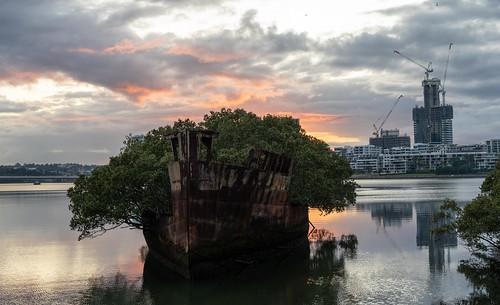 ssayrfield homebushbay sydney innerwest wreck shipwreck wentworthpoint nsw newsouthwales australia rambo2100 water sunrise boat rhodes explore