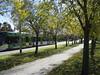 Walk or Tram - the Northcote Bike and Walking Path