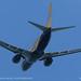 "<p><a href=""https://www.flickr.com/people/srkirad/"">srkirad</a> posted a photo:</p>  <p><a href=""https://www.flickr.com/photos/srkirad/49947546111/"" title=""Boeing 737-73S""><img src=""https://live.staticflickr.com/65535/49947546111_1cb5f0cb06_m.jpg"" width=""240"" height=""160"" alt=""Boeing 737-73S"" /></a></p>  <p>ASL Airlines France (F-GZTQ)</p>"