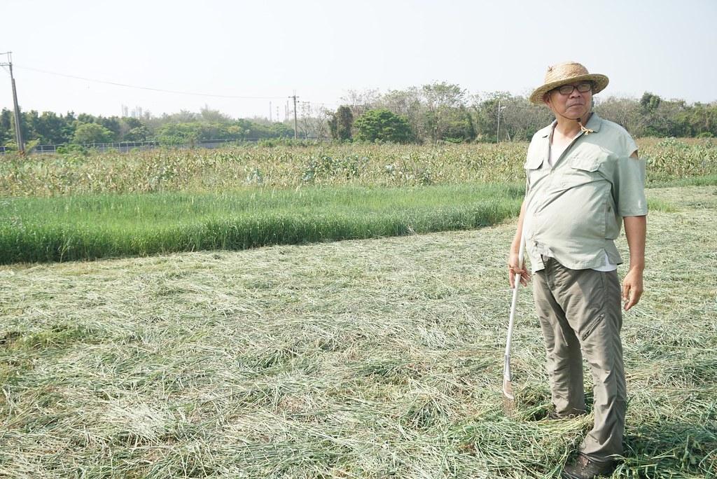 馬伯煌/甜心牧場合夥人。前方有機牧草正在收割,後方為有機玉米田、平地森林。(攝影:王章逸)