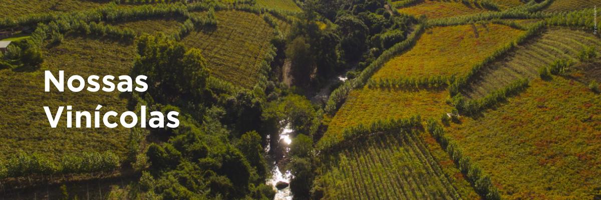 Vinícolas do Brasil