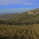 17. Oktoober 2014 - 15:11 - Corsica