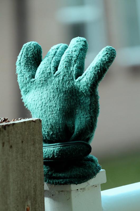 green fuzzy glove