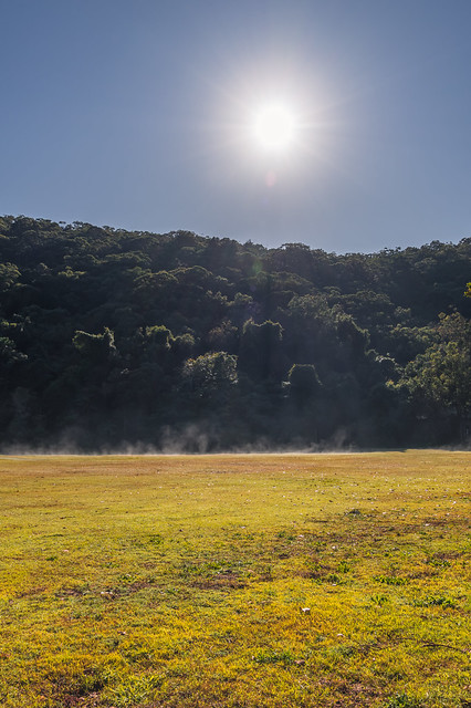 Early Morning Mist rising of the grass at the foot of the mountain.