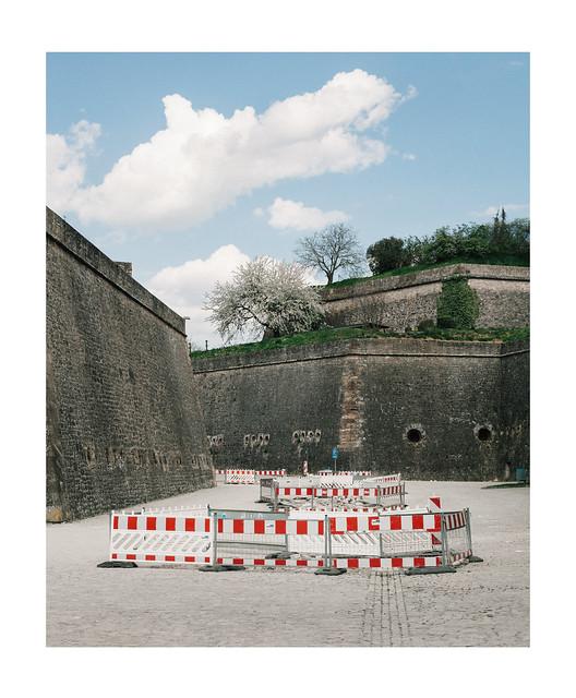Fence Procession