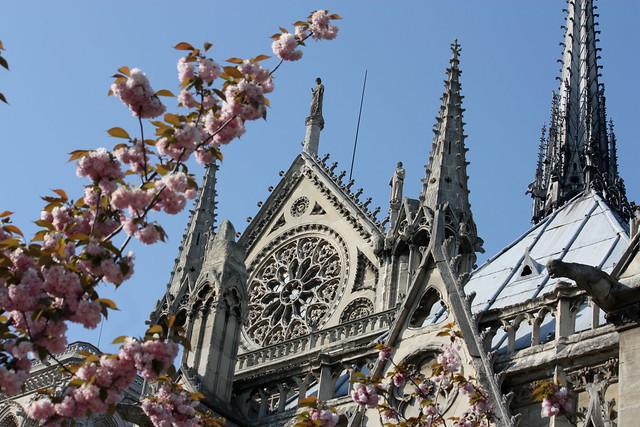 April 2010 - Notre Dame south facade