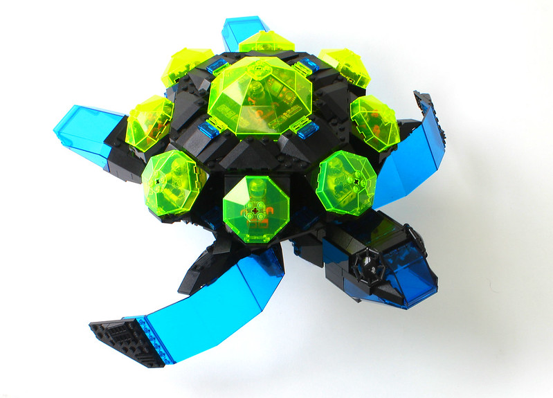 Greater Space Turtle