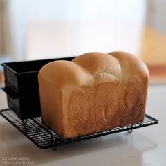 生クリーム食パン 20200527-DSCT3877 (2)