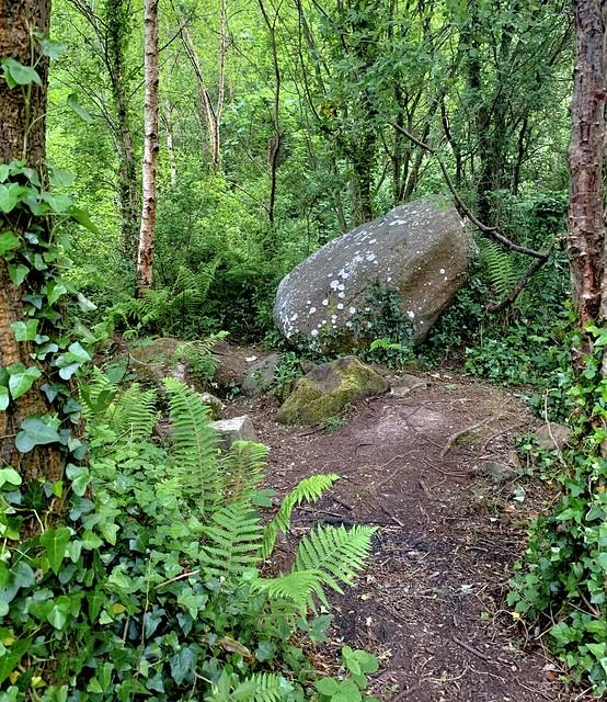Glacial Erratic, Scrabo Country Park, Newtownards