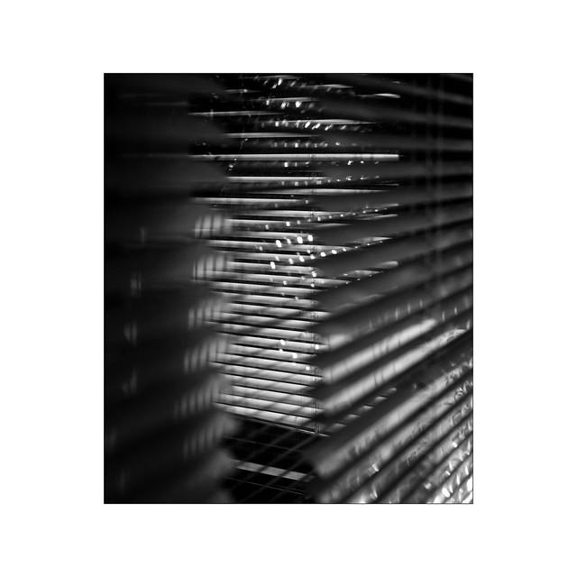 Véranda abstract